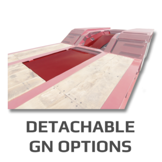 Detach Options